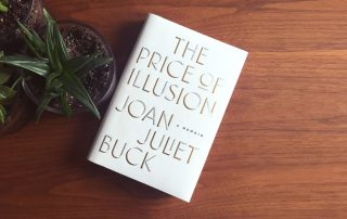 The Price of Illusion, book with some succulents